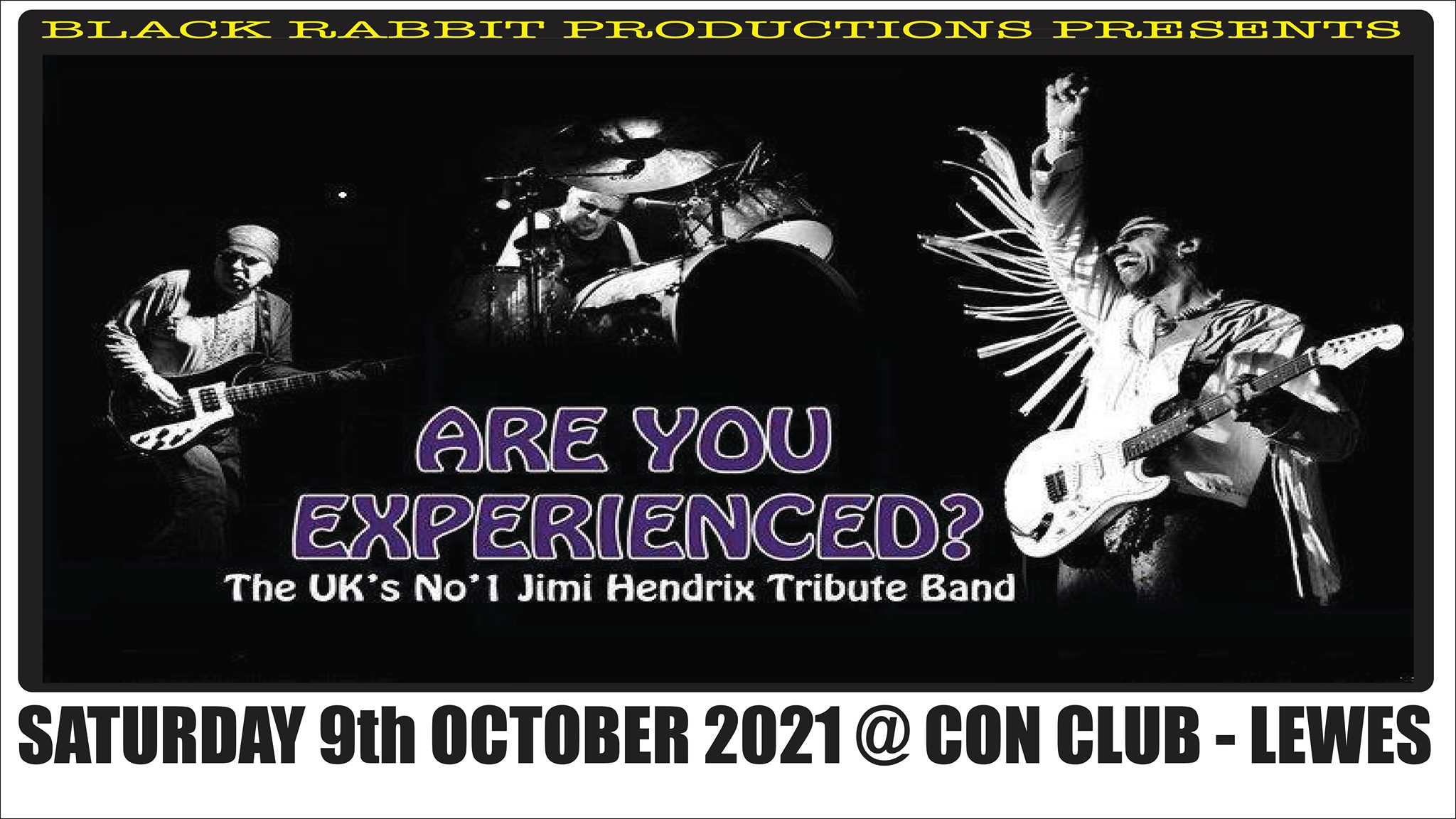 Are You Experienced? - Uk's No.1 Hendrix tribute